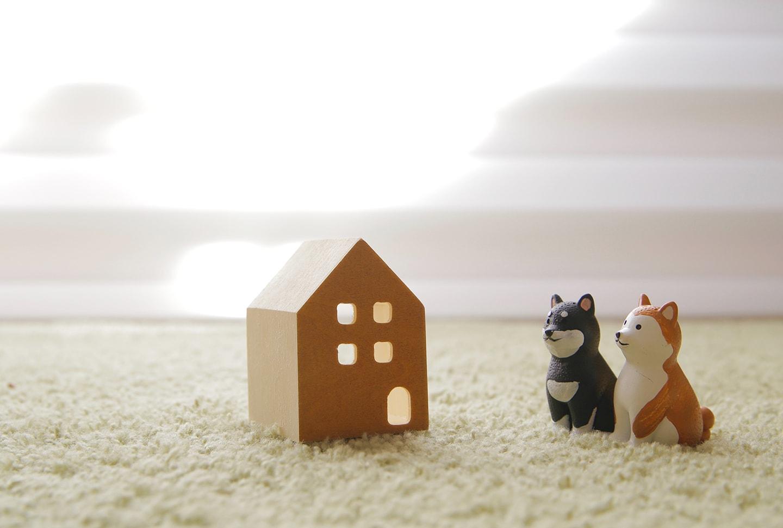 ペットと暮らす家。間取りや内装のアイディア