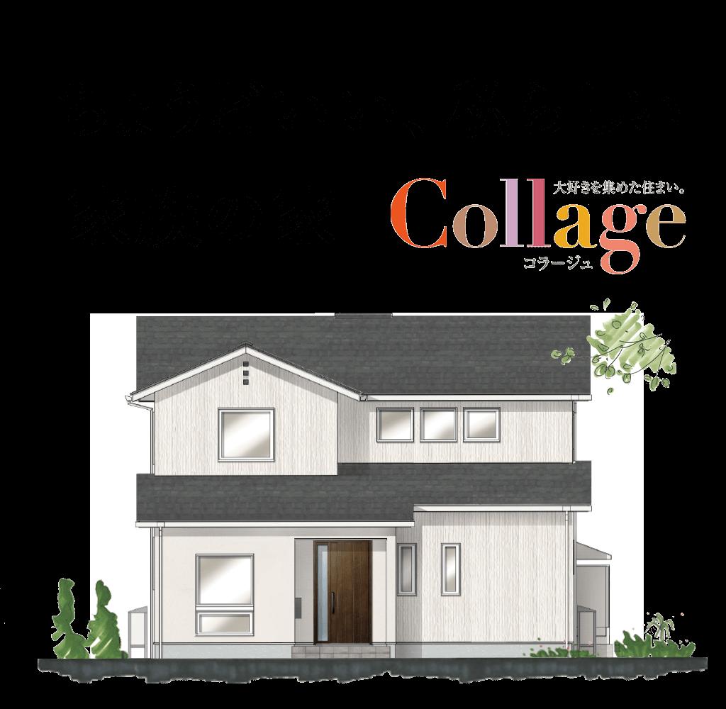 ちょうどいい、私らしい 家族の家 Collage